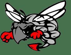 gulf high school logo
